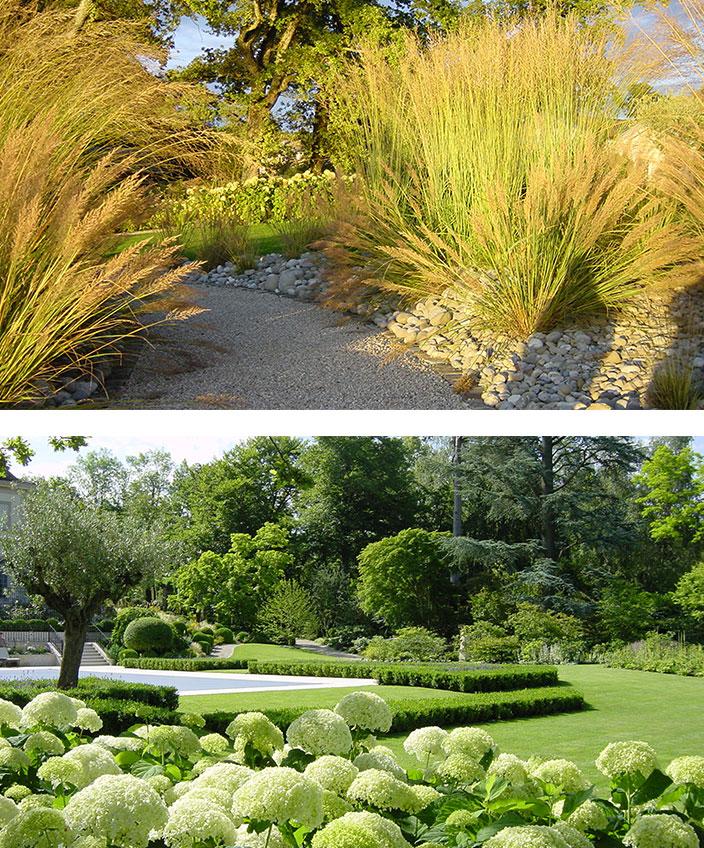 Architecte paysagiste - Christian Préaud - Atelier Jardins - Jardin paysagé - Jardin arboré en Suisse - Hortensias blancs -Signatures Singulières